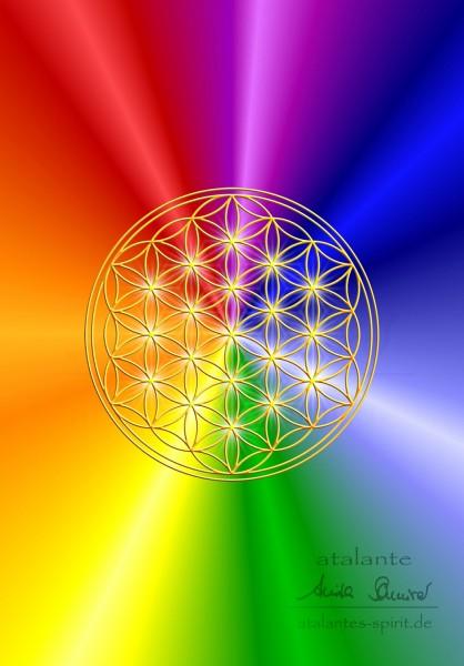 Blume des Lebens Postkarten | Motiv rainbow | Vorderseiten-Ansicht | designed by atalantes spirit®