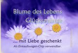 Vorderseite_atalantes-spirit_Klapp-Visitenkarten_EnerChrom_Gl-cksm-nzen_Danke_kl