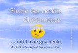 Vorderseite_atalantes-spirit_Klapp-Visitenkarten_EnerChrom_Gl-cksm-nzen_Gute-Besserung_kl