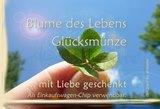 Vorderseite_atalantes-spirit_Klapp-Visitenkarten_EnerChrom_Gl-cksm-nzen_kl