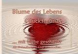 Vorderseite_atalantes-spirit_Klapp-Visitenkarten_EnerChrom_Gl-cksm-nzen_Liebe_kl